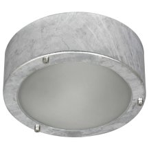 SMARTWARES Ceiling/Wall Light 60 W Silver 5000.314