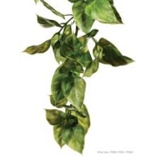 Exo Plastic Amapallo Shrub (large)