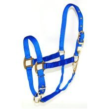 Hamilton 1-Inch Nylon Halter with Adjustable Chin, Blue - Yearling Size