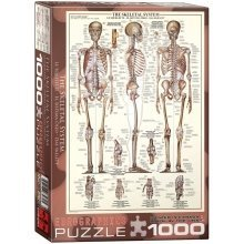 Eg60003970 - Eurographics Puzzle 1000 Pc - the Skeletal System