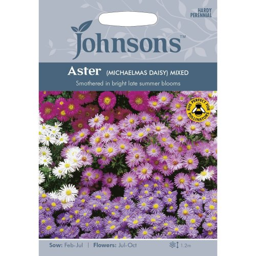 Johnsons Seeds - Pictorial Pack - Flower - Aster - Michaelmas Daisy Mixed - 200 Seeds