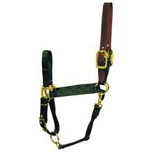 Hamilton 1-Inch Nylon Adjustable Horse Halter with Leather Head Poll and Throat Snap, Average, Black