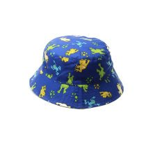 Summer Fashion basin Sun Protection Hat Shading Of The Girls  (Blue)