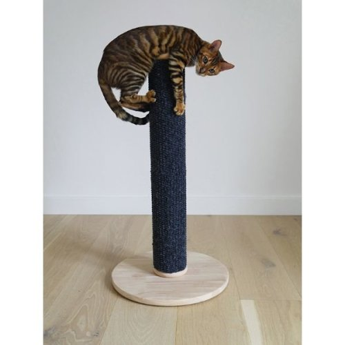 Cat Scratching Post Tall Catnip