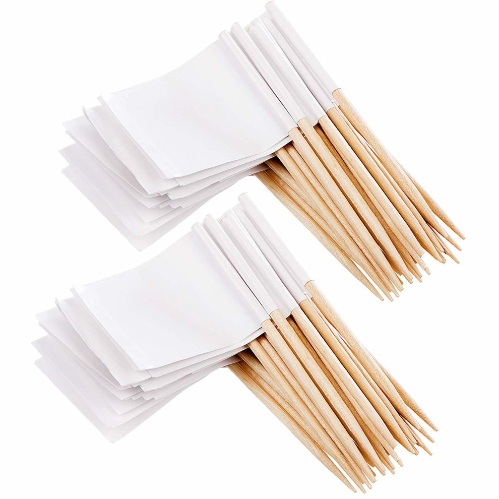 100 Blank Toothpick Food Flags | Party Food, Cheeseplate