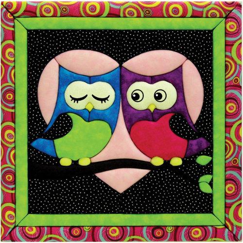Love Owls Quilt Magic Kit-Love Owls