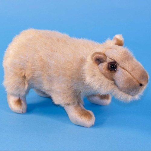 Dowman Capybara Soft Toy 26cm