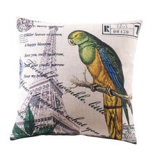 Fashion Pillow Home/Office Back/Body Pillow Throw Pillow-A19