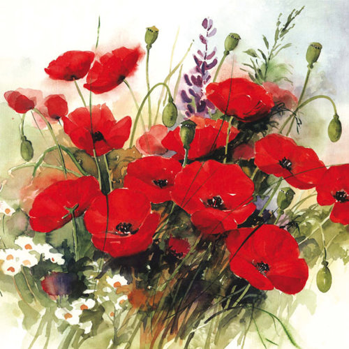 Ambiente 3 Ply Paper Lunch Napkins, Wild Poppies