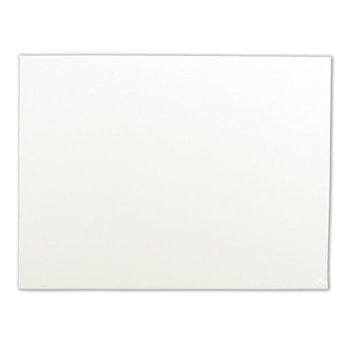 "Artists' Quality Canvas Board-16""X20"""