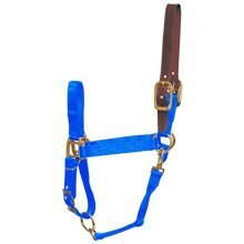 Hamilton 1-Inch Nylon Adjustable Horse Halter with Leather Head Poll and Throat Snap, Large, Blue