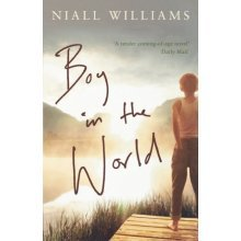 Boy in the World (Paperback)