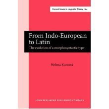 From Indo-European to Latin: The evolution of a morphosyntactic type (Current Issues in Linguistic Theory)
