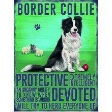Dog Metal Sign - Border Collie- Best Breed Metal Sign