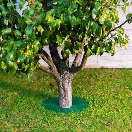 Tree Guard - Weed & Grass Control around Tree trunks Or Posts - 4 Pack (Small) - Grass Edge