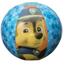 Paw Patrol Beach Ball