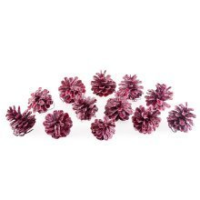 Set of Twelve Pink/Red Waxed Pine Cone Christmas Decoration Accessories