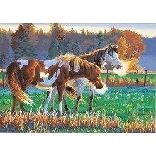 Dpw91417 - Paintsworks Paint by Numbers - Pasture Buddies