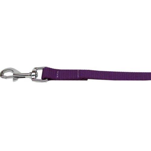 Mirage Pet 124-1 PR1004 Plain Nylon Pet Leash, Purple - 1 in. by 4 ft.