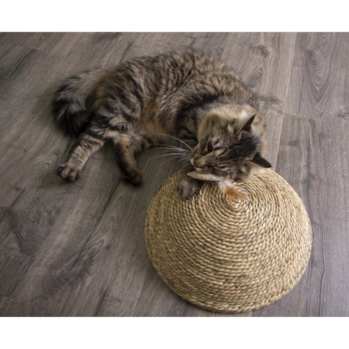 Petlinks Scratch Dome Floor Scratcher-