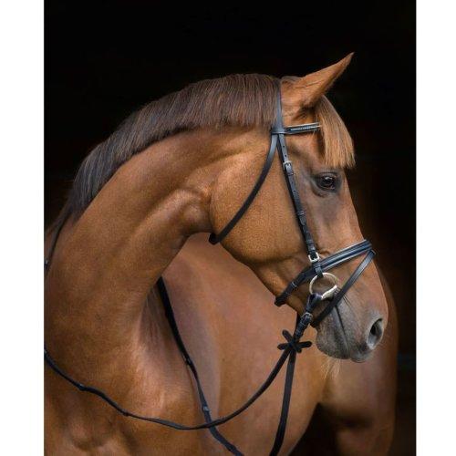 Kerbl Snaffle Bridle Silverado 2.0 Leather Pony 325400