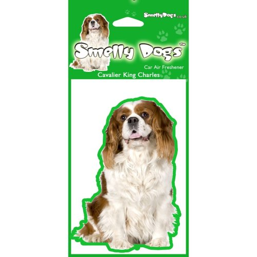 Cavalier King Charles Air Freshener x 4 pcs. Each freshener individually packaged - Ideal for you Car, House or Caravan.