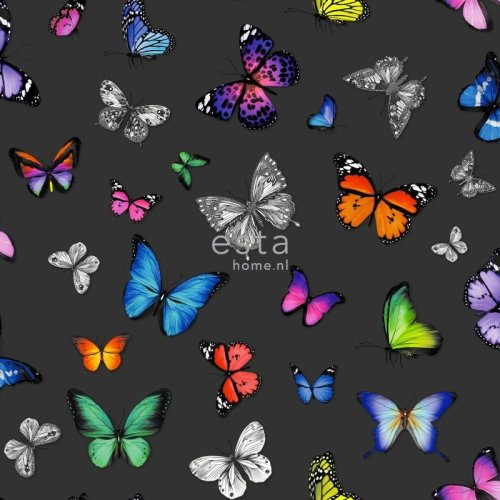 HD non-woven wallpaper butterflies colourful on black
