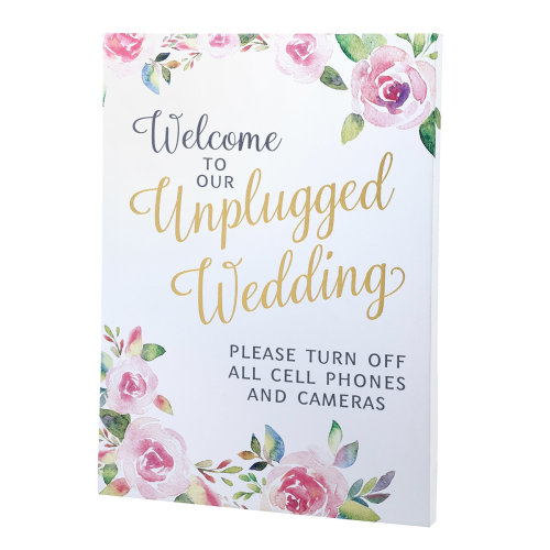 Lillian Rose Watercolor Unplugged Wedding Sign