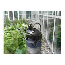 Frog Prince Gardneing Watering Can - Apples Pears Handcrafted Galvanised -  frog prince gardneing watering can apples pears handcrafted galvanised