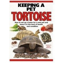 Keeping a Pet Tortoise